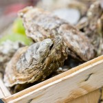 Oesters proeven
